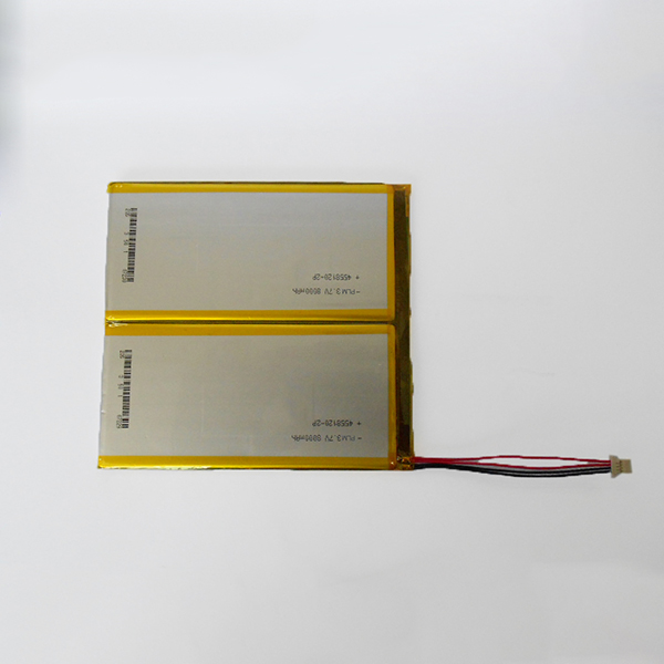 Electronic book battery